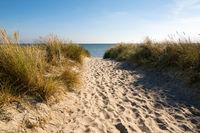 Strandweg auf Rügen