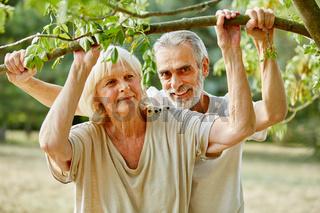 Glückliches Senioren Paar unter einem Baum
