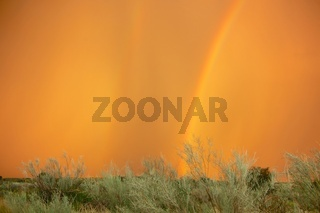rainbow at kgalagadi transfrontier park south africa