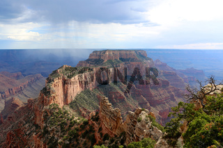 south rim grand canyon USA
