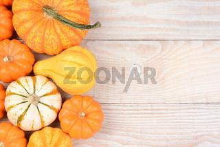Autumn Gourd Still Life