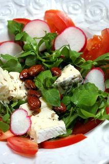 Steinpilz-Pfifferling-Käse mit Vogelmiere-Salat