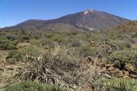 Vulkan Teide auf der kanarische Insel Teneriffa