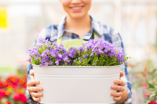 close up of happy woman holding flowers in pot