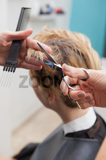 Hairdresser cutting a customers hair