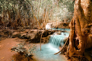 Fantasy jangle landscape with turquoise waterfall at deep tropical rain forest. Concept  for mysterious nature background