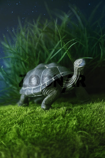 Toy turtle walking on grass