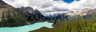 Panorama Peyto Lake