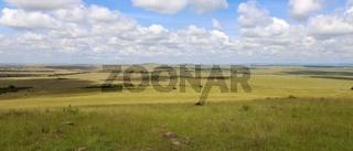 beautiful landscape at the masai mara national park kenya africa