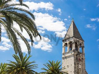 Glockenturm von St. Dominik und Palmen, Trogir, Kroatien