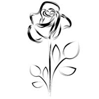 Black silhouette of a rose on a white background