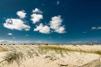 Nordseeinsel Amrum