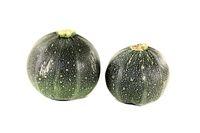 frische runde Zucchini