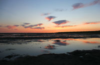 Wadden Sea Schleswig-Holstein, Germany