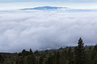 Cloud inversion layer between Tenerife and La Gomera viewed from above the clouds at approx 1000 metres above sea level