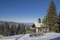 Winter auf der Neureuth