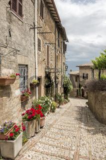 typical italian city street