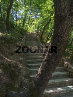 Wanderweg mit Treppe durch den Wald im Krka Nationalpark in Kroatien