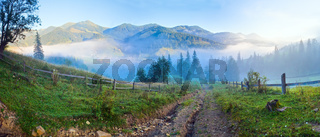 Summer mountain misty panorama.
