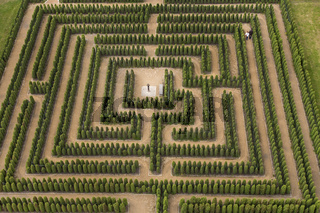 Labyrinth, Heckenlabyrinth, Irrgarten, Brandenburg, Deutschland, Europa