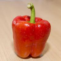 Knackige rote Paprika