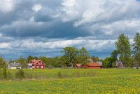 Bauernhof in Schweden