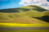 Farmland at Piano Grande, Castelluccio, Umbria, Italy