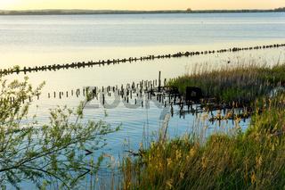 Landschaft am Dümmer See-84