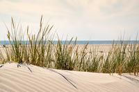 Duene mit Sandwellen und Strandhafer