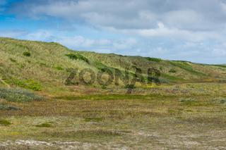 Dänische Landschaft-45
