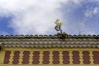 gelbe Pflanze auf einem kanarischen Hausdach, Teneriffa, Spanien