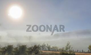 Winter sun in foggy landscape