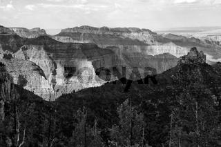 the grand canyon national park north rim arizona USA (black and white)