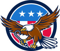 American Eagle Clutching Towing J Hook USA Flag Circle Retro