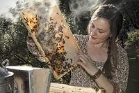 Junge Imkerin bei der Arbeit am Bienenstand