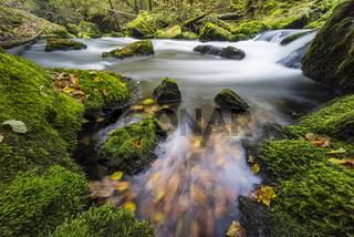 Herbstfarben im Fluss bei langer Belichtung