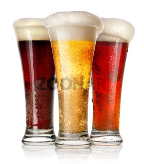 Tall glasses of beer