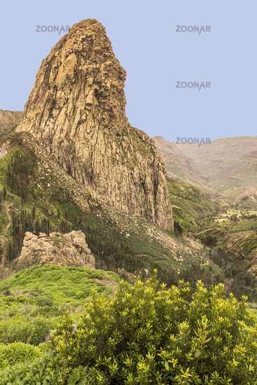Garajonay National Park  La Gomera Canary Islands Spain