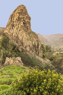 Garajonay National Park  La Gomera Canary Islands Spain