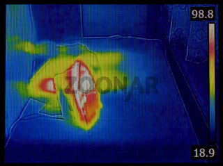 Iron Infrared Image
