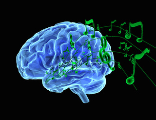 Music and Brain
