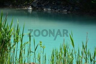 ungewöhnliches ,grünes Wasser
