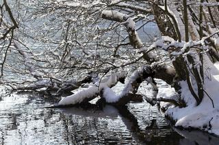 Winter am See, winter at a lake