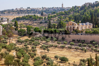 Mount of Olives and Shurch of All Nations.