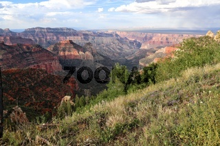 the amazing grand canyon national park north section