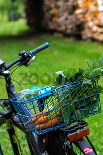 Pflanzen im Biogarten-28