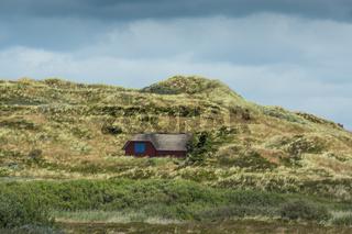 Dänische Landschaft-48
