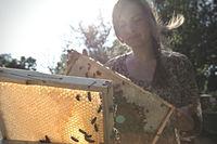 Imkerin prüft eine Honigwabe am Bienenstand