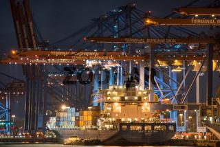 Containerschiffe am Burchardkai, Hamburg