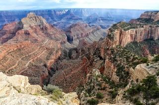 the amazing grand canyon national park north rim arizona USA